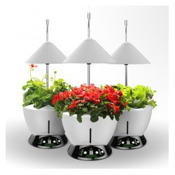 LED Home System -UrbanGreen I-Grow G601-C, 40W (red/white LED)